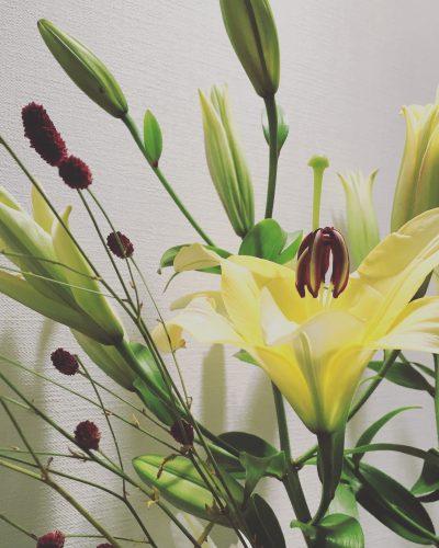 毎月2回のお花の定期便